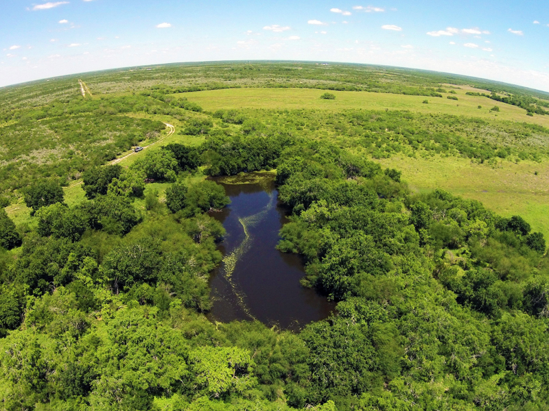 Property For Sale at 2.097+/- Acres Lagarto Valley Ranch