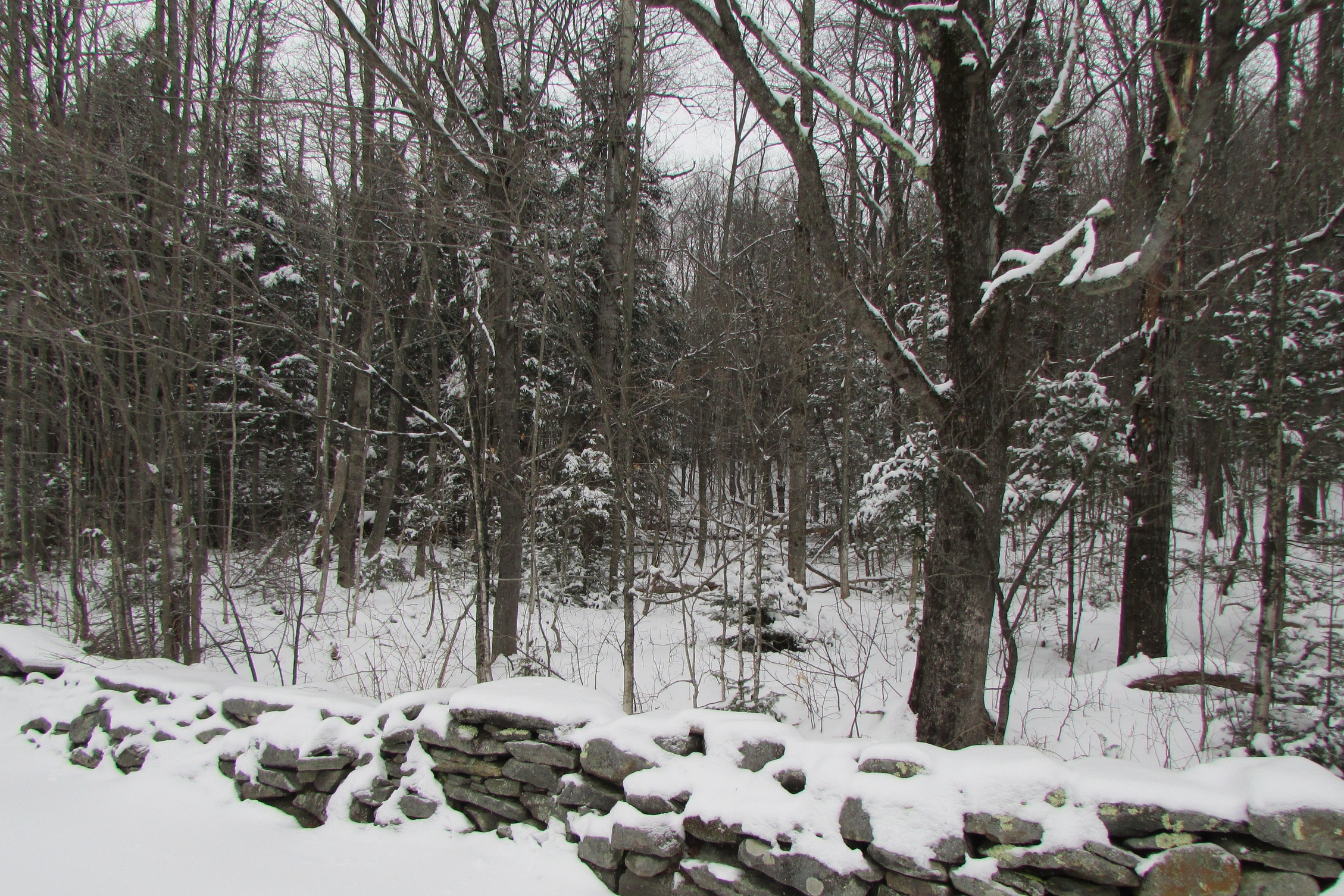 Land for Sale at Country Living near Mount Snow Smith Rd Wilmington, Vermont, 05363 United States