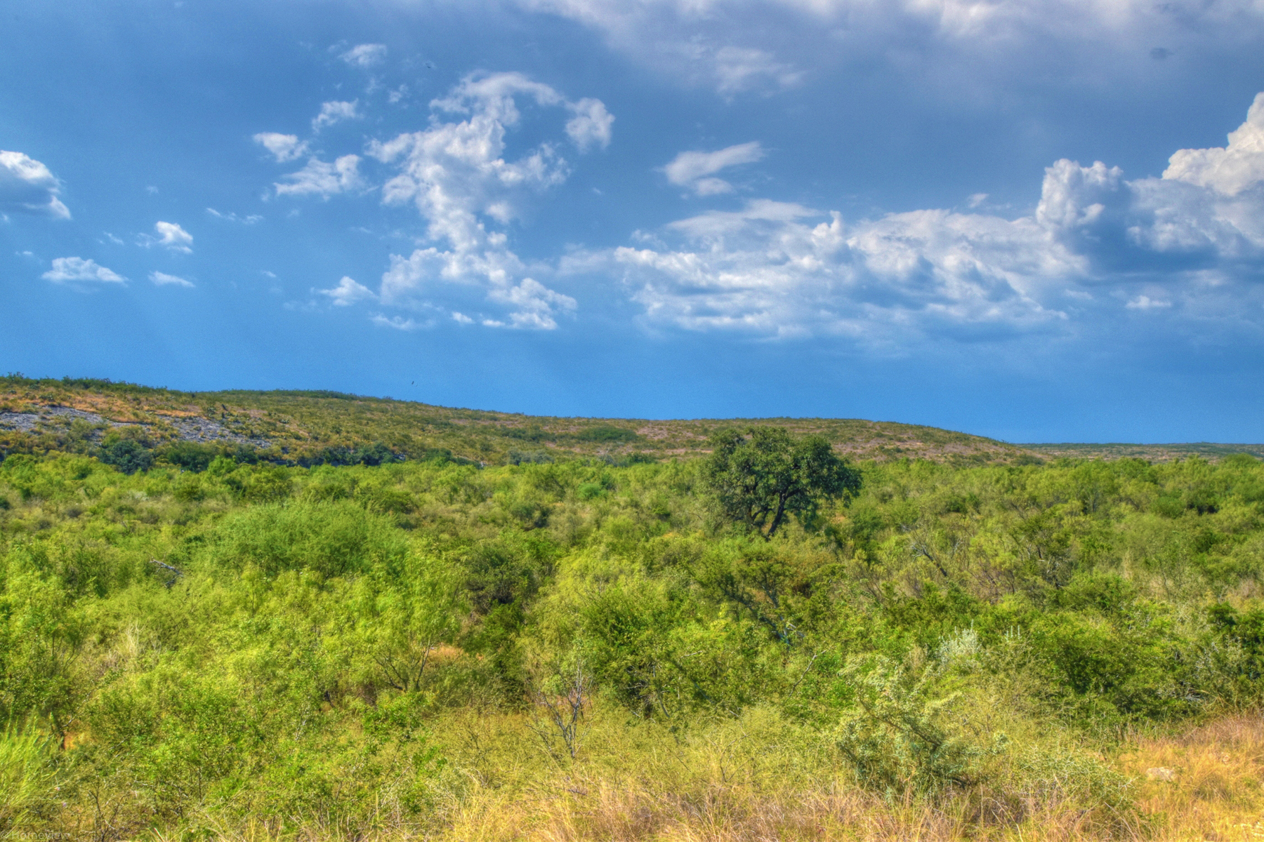 Farm / Ranch / Plantation for Sale at 2894.09± Acre Little Indian Creek Ranch 2894.09 Acres / Hwy 55 Uvalde, Texas 78801 United States