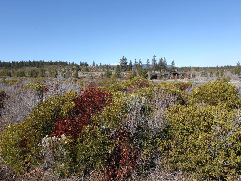 Terreno por un Venta en Tetherow 61435 Cannon Ct Bend, Oregon 97702 Estados Unidos