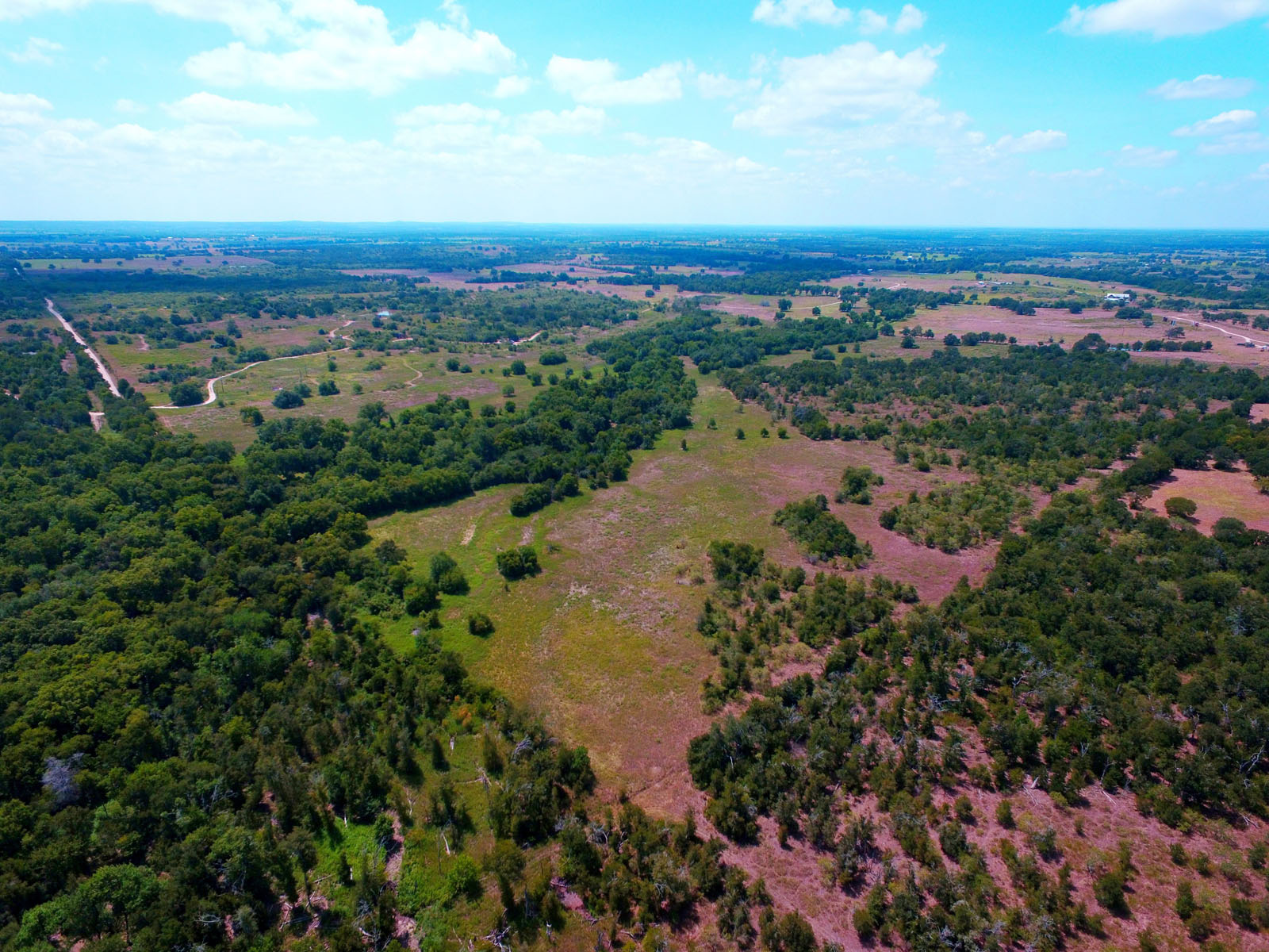 Additional photo for property listing at 386 Acre Ranch with All the Trappings 00 Oil Field Rd Lockhart, Texas 78644 Estados Unidos