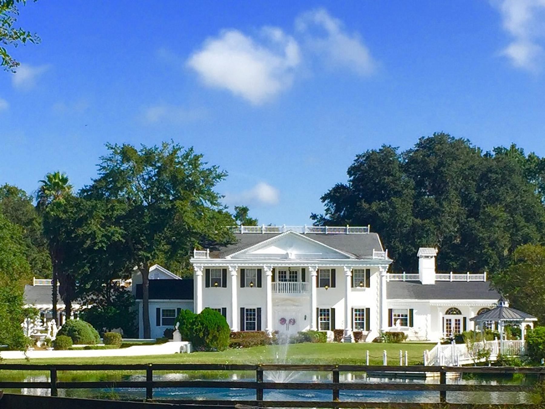 Villa per Vendita alle ore OCALA - REDDICK 8025 120th St Reddick, Florida, 32686 Stati Uniti