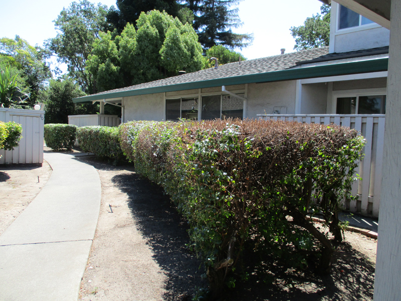 Кооперативная квартира для того Продажа на 81 Belvedere Ct, Napa, CA 94559 81 Belvedere Ct Napa, Калифорния 94559 Соединенные Штаты