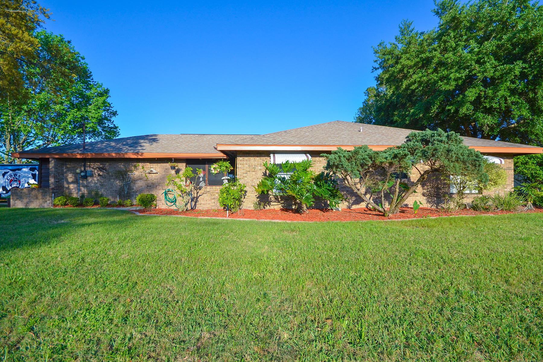 Maison unifamiliale pour l Vente à ORLANDO - DELTONA 379 Alexander Ave Deltona, Florida, 32725 États-Unis