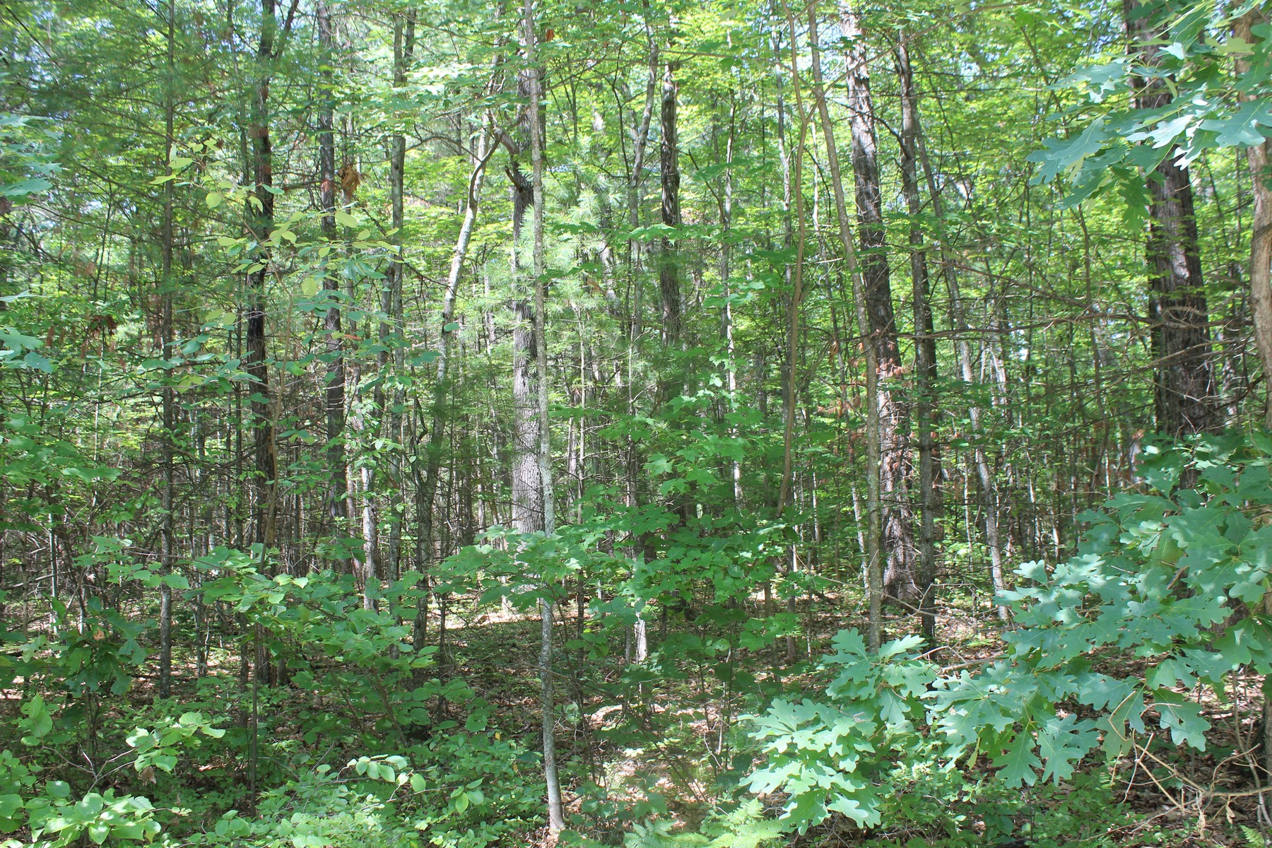 Additional photo for property listing at Southwoods Subdivision Southwoods Rd Fort Edward, Нью-Йорк 12828 Соединенные Штаты