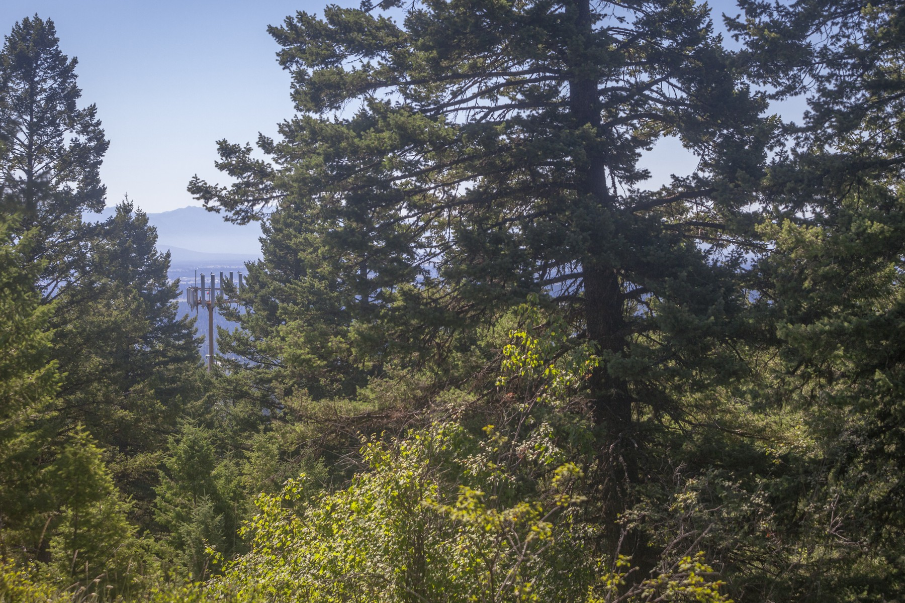 sales property at Nhn Wolf Tail Pines Rd , Whitefish, MT 59937