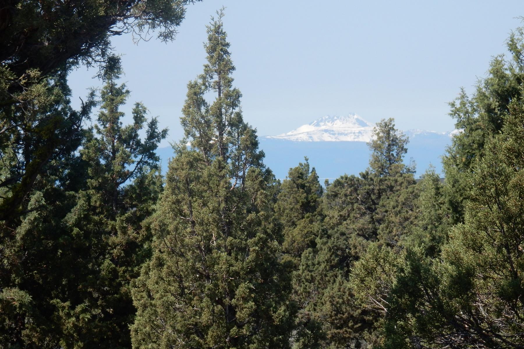 土地 のために 売買 アット West Powell Butte Es 16806 SW Mt Adams Loop Powell Butte, オレゴン 97753 アメリカ合衆国