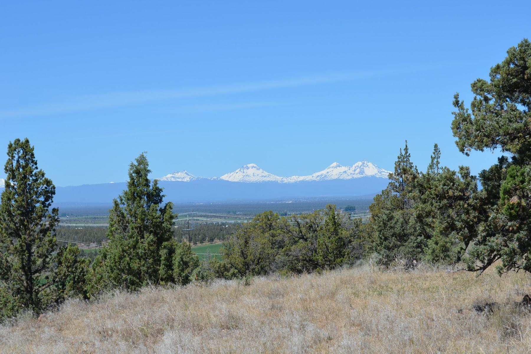 Terreno por un Venta en TL 100 Westwood/Rosewood Drive, POWELL BUTTE Powell Butte, Oregon 97753 Estados Unidos