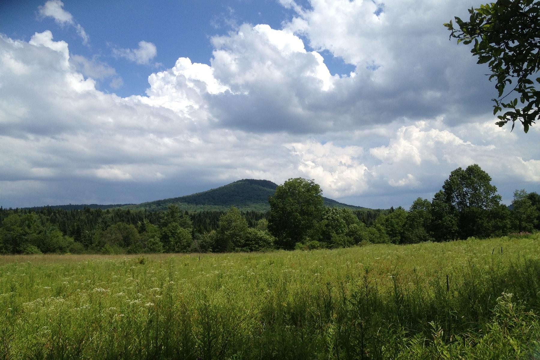 Terreno para Venda às 122 Acres with Mountain Views Shunpike Road Mount Holly, Vermont 05758 Estados Unidos