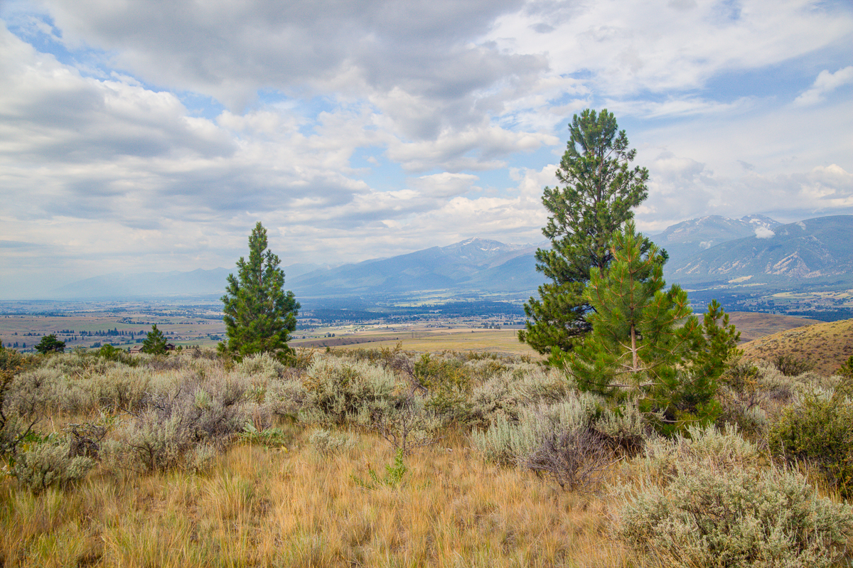 Additional photo for property listing at Sapphire Ridge Ranch Lot 10  Sapphire Ridge Ranch Florence, Montana 59833 United States