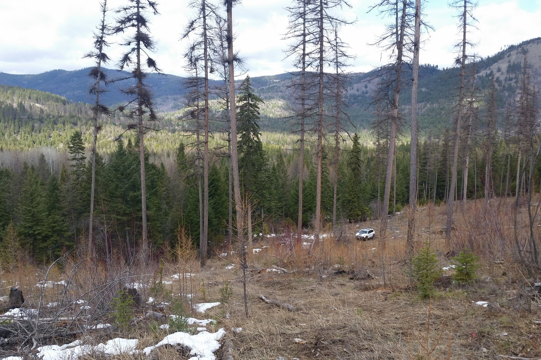 Land for Sale at Blacktail Mountain Private Forest Blacktail Mountain Rd Lakeside, Montana, 59922 United States