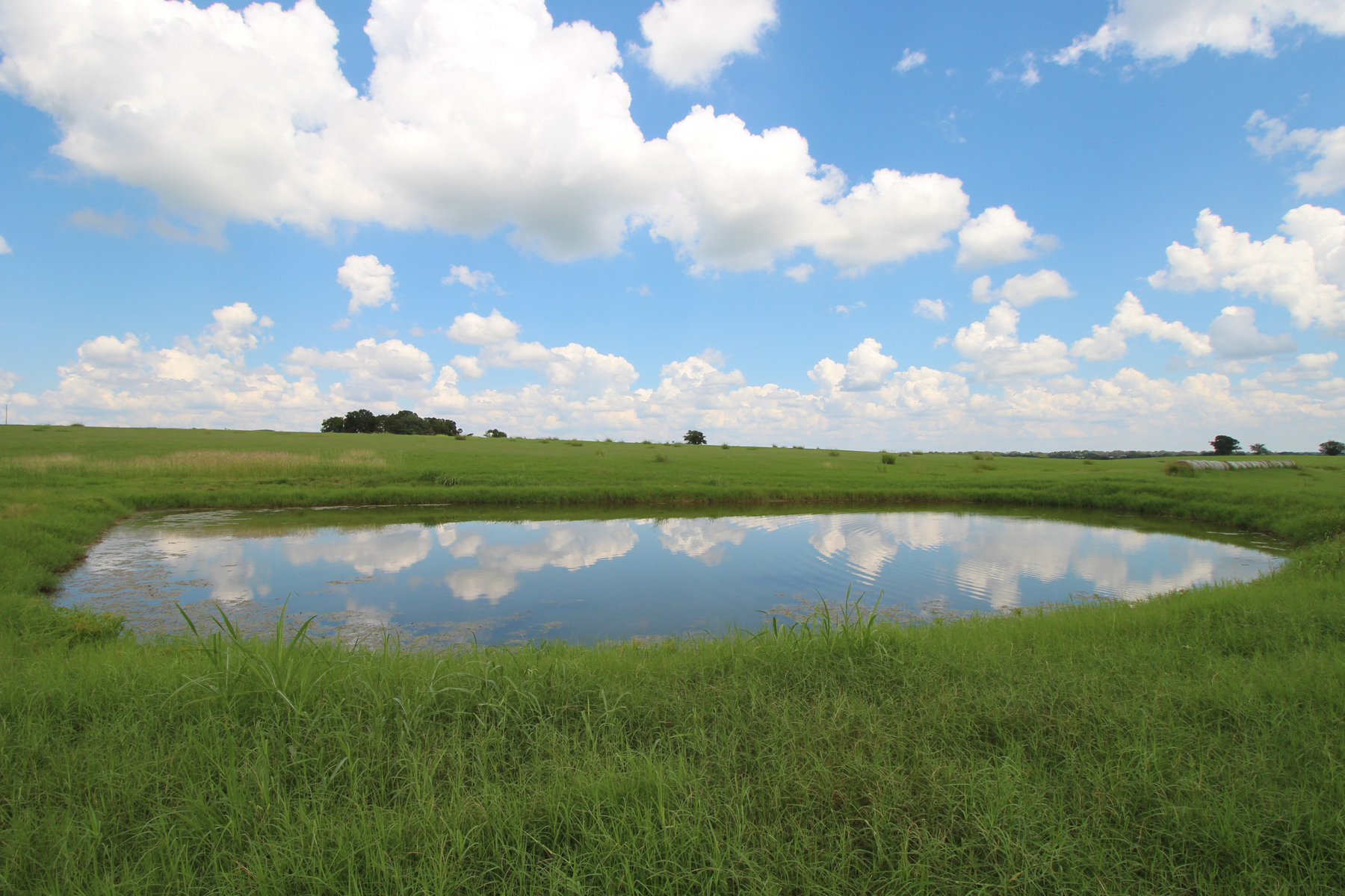 Additional photo for property listing at 516± Acres - Navidad River Ranch 516 +- AC - Fayette County c Schulenburg, Texas 78956 United States