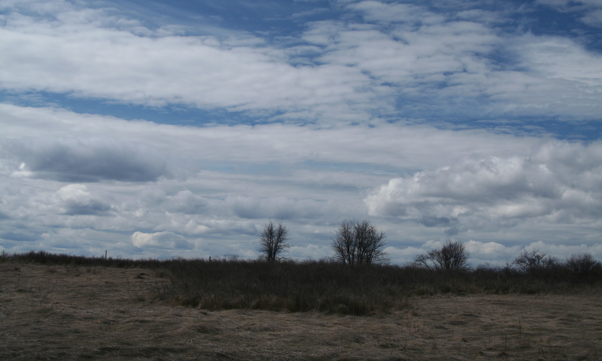 Terreno por un Venta en Fox Hill Lot 1618 Foxtail Dr Kalispell, Montana, 59901 Estados Unidos
