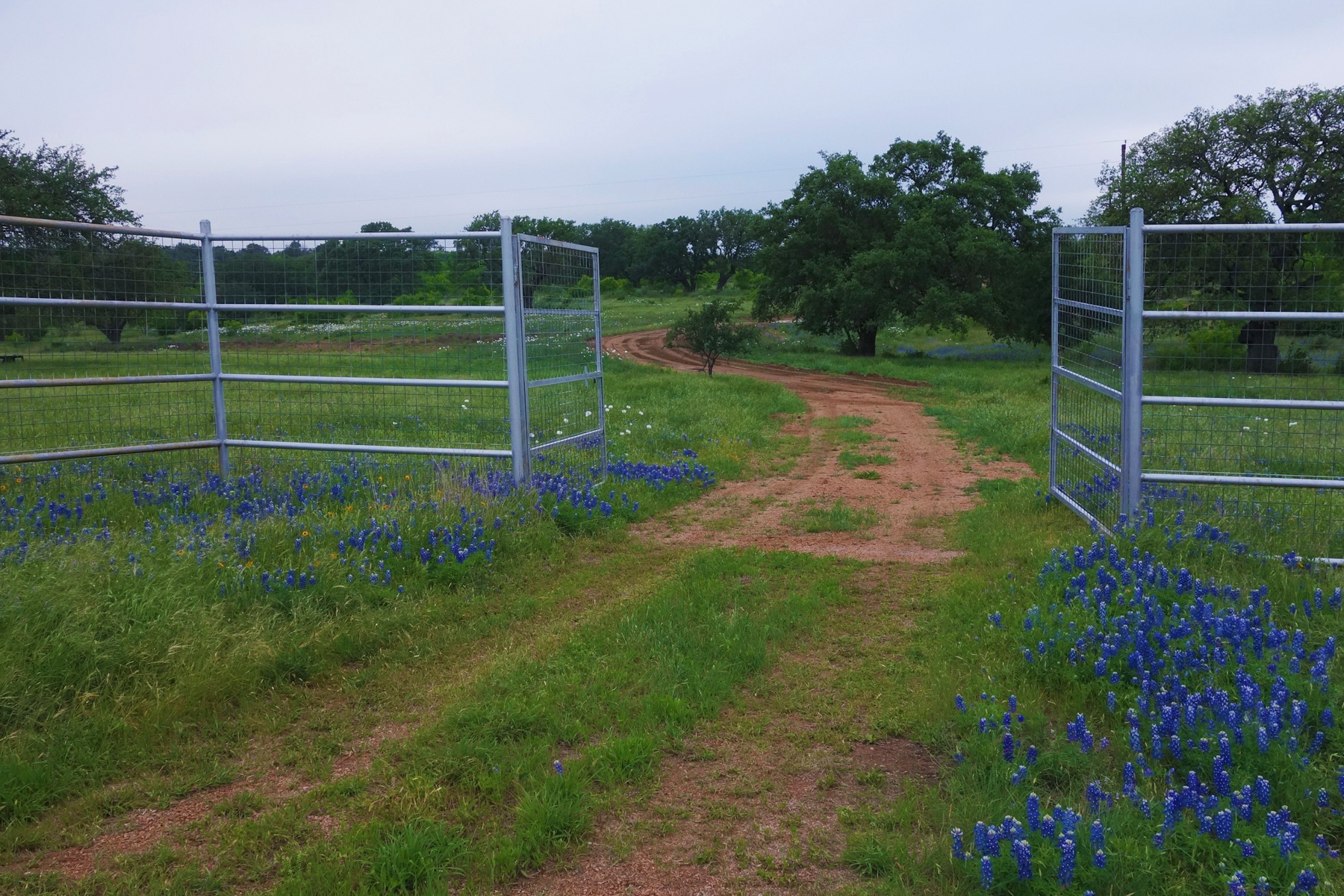 Additional photo for property listing at 776± Acres Comanche Ridge Ranch CR-309 - RR 3347  776+- AC Round Mountain, Texas 78663 United States