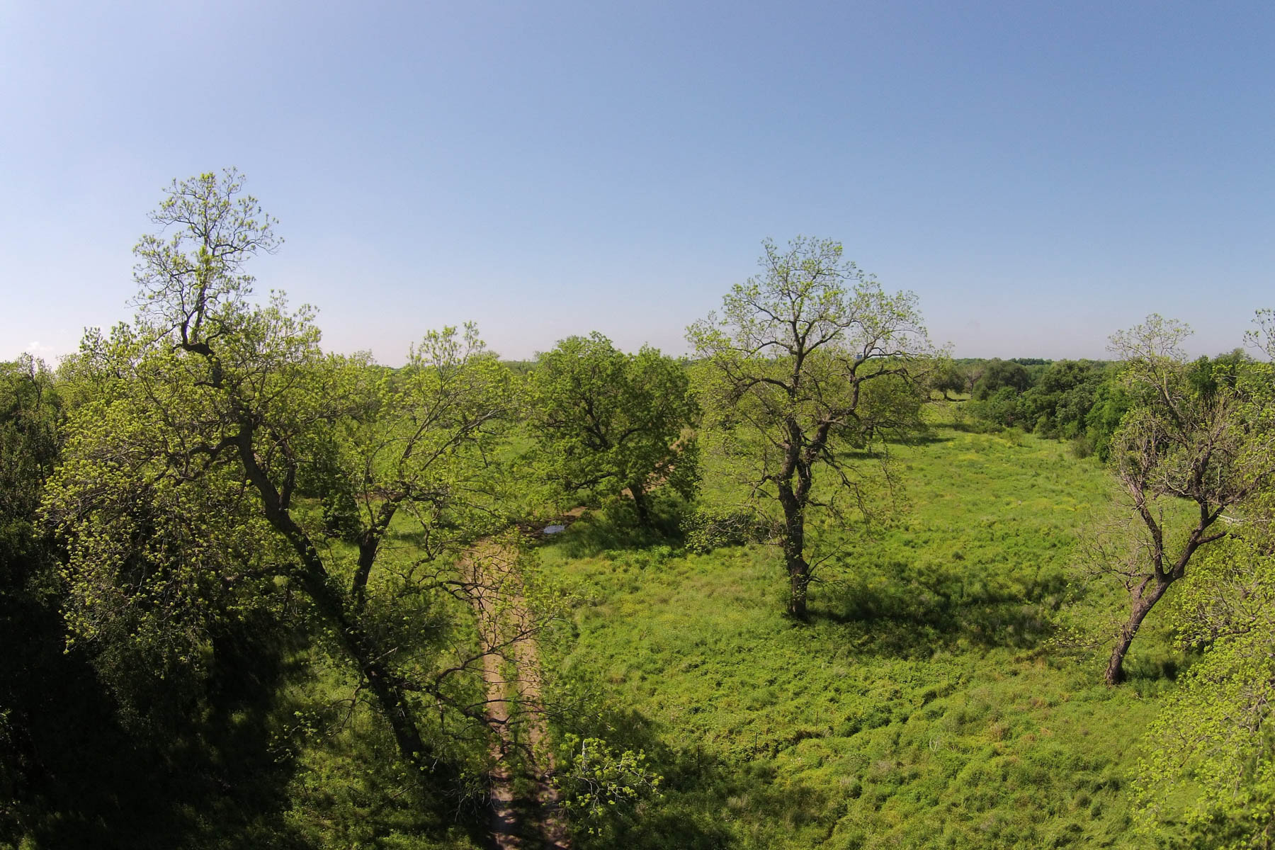 Additional photo for property listing at 101+- Acres Bexar County - Medina River Ranch 8182 Old Pearsall Rd San Antonio, Texas 78252 Estados Unidos