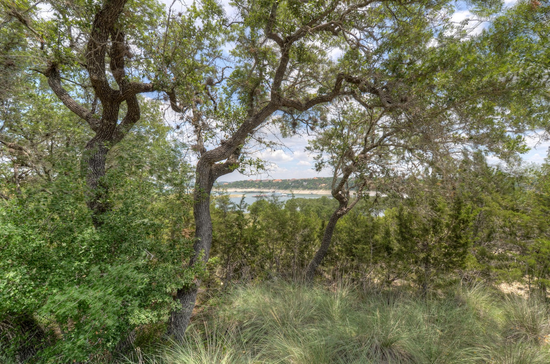 Additional photo for property listing at Rare Lake Travis Waterfront Lot 1303 Oak Hurst Rd Austin, Texas 78734 United States