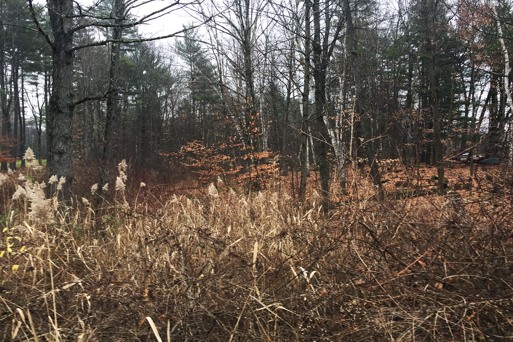 Additional photo for property listing at 4 Acre Homesite 0  Rainbow Tr Queensbury, New York 12804 United States