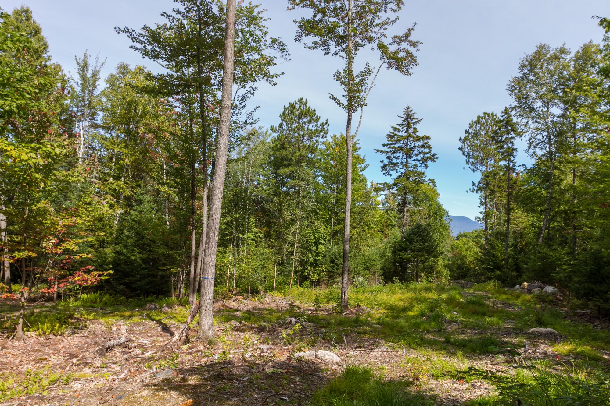 Land for Sale at Lot 8 Simonds Rd, Dalton Dalton, New Hampshire, 03598 United States