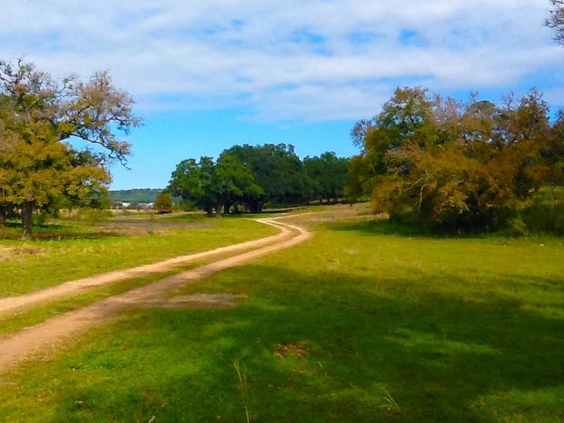 Fazenda / Rancho / Plantação para Venda às 220 Acres Maynard Ranch FM 1863 Bulverde, Texas 78163 Estados Unidos
