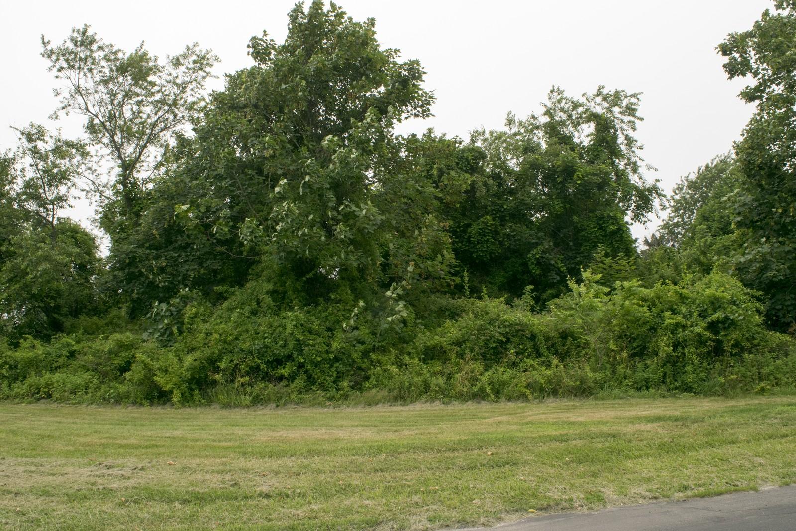 토지 용 매매 에 Land 665 Moose Trl Cutchogue, 뉴욕, 11935 미국