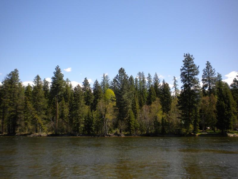 地產 為 出售 在 Swan River Land 284 Sunburst Dr Bigfork, 蒙大拿州, 59911 美國