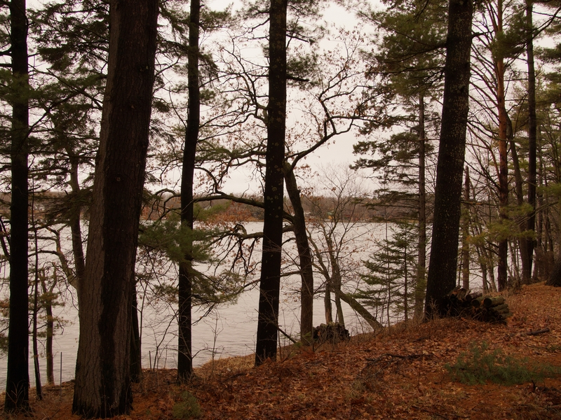 sales property at 1335 Hungerford Point , Saint Croix Falls, WI 5402