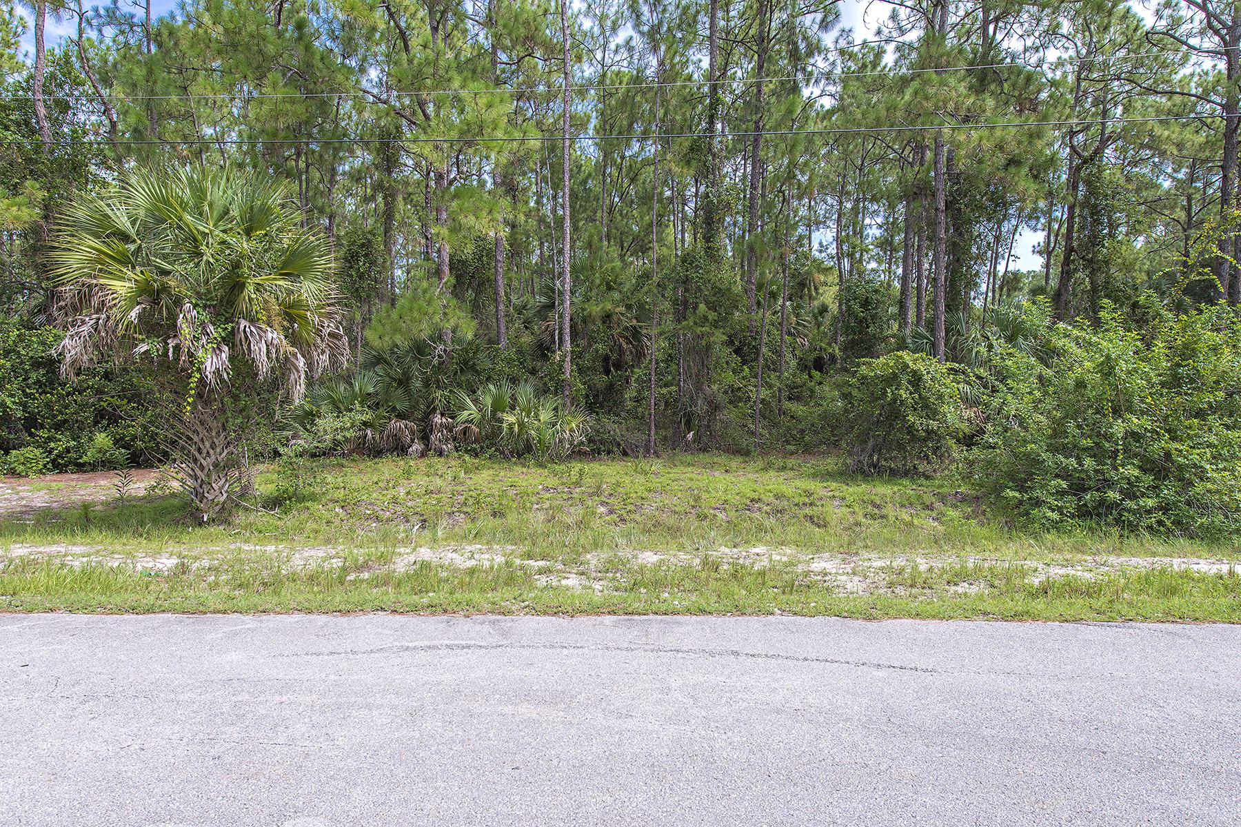 Terreno por un Venta en GOLDEN GATE ESTATES 0 11th Ave SW Naples, Florida 34119 Estados Unidos