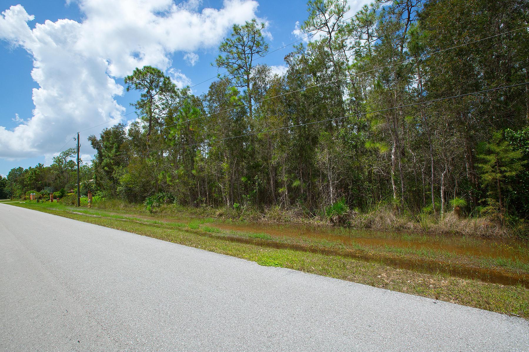 Land for Sale at SAN CARLOS ESTATES 24344 Roger Dodger St Bonita Springs, Florida, 34135 United States
