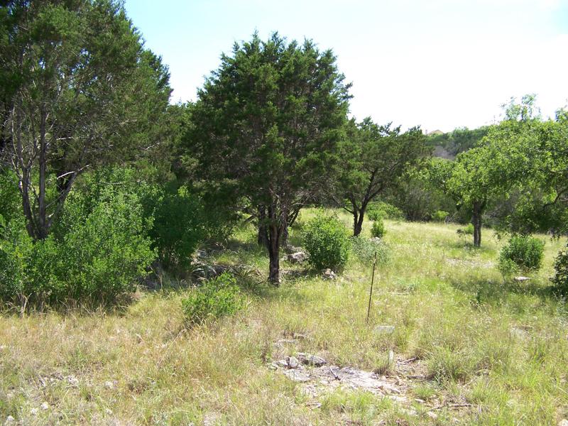 地產 為 出售 在 Gorgeous Lot in Horseshoe Bay 0 Jalapeno Lot 22331 San Antonio, 德克薩斯州 78257 美國