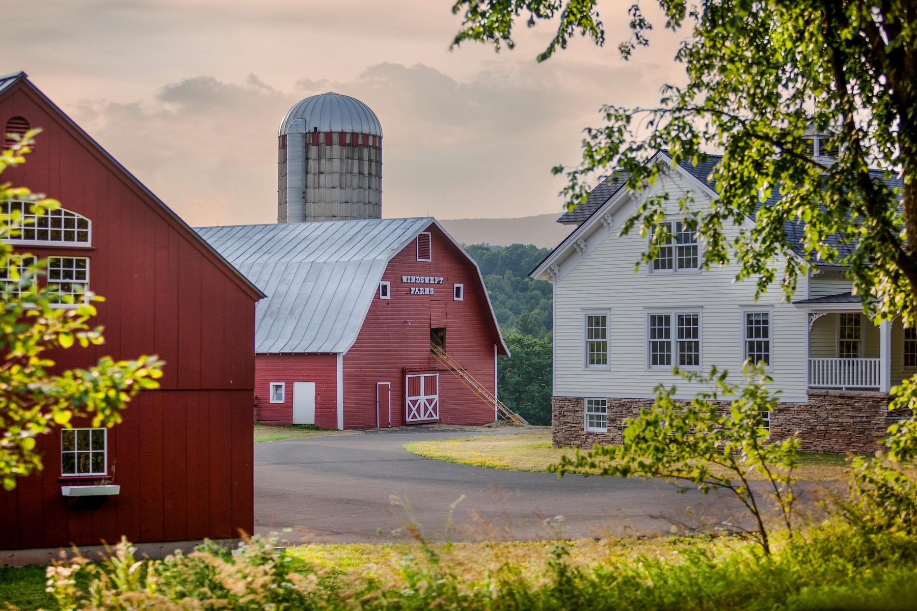 Частный односемейный дом для того Продажа на Windswept Farms in Windham 351 North Settlement Rd. Windham, Нью-Йорк 12496 Соединенные Штаты