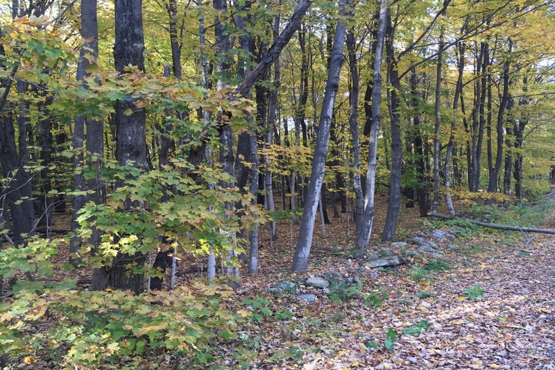 Additional photo for property listing at Greenfield Opportunity Awaits 3483A  Boyhaven Rd Greenfield, Nueva York 12850 Estados Unidos