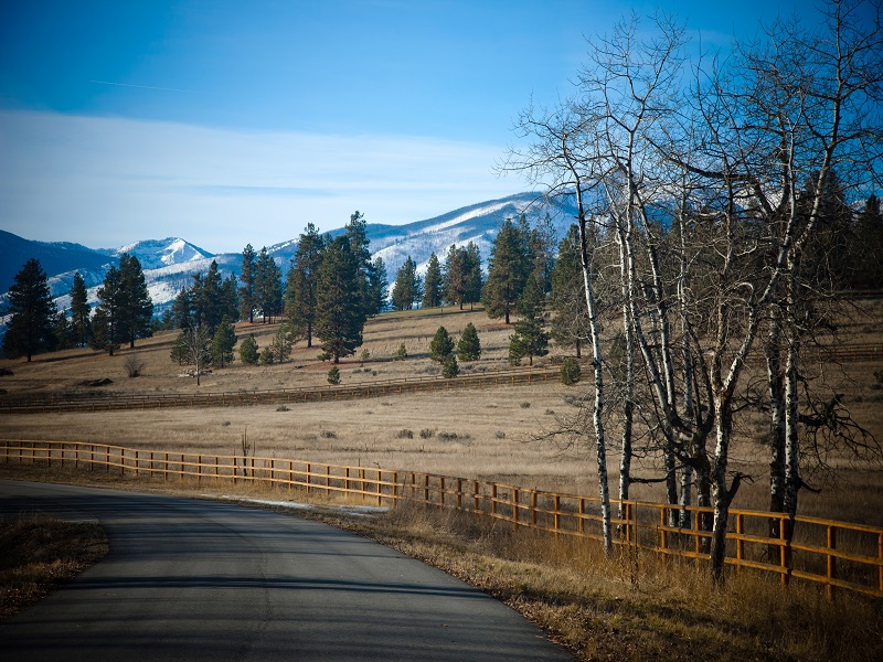 Additional photo for property listing at Lot 11 Hillside Ranch Rd Lot 11  Hillside Ranch Rd Victor, Montana 59875 United States