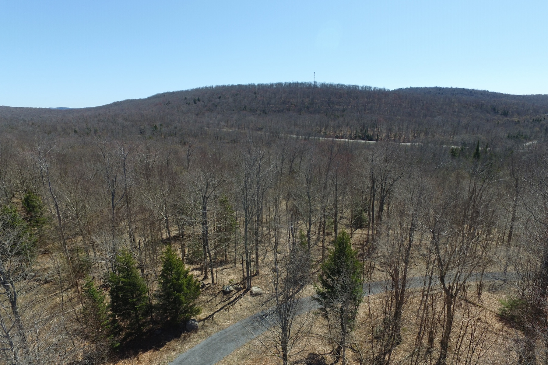 Additional photo for property listing at Adirondack Land For Sale 1515-C  Nys Route 28 Thendara, New York 13472 United States