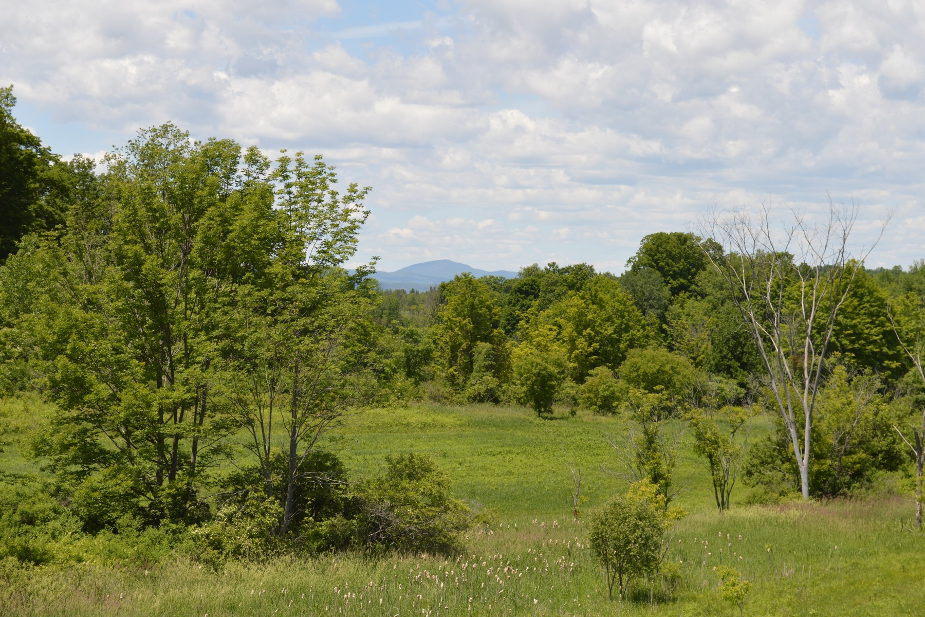 Additional photo for property listing at Country Colonial with Organic Farm 40  Woodell Rd Middle Granville, Nueva York 12849 Estados Unidos