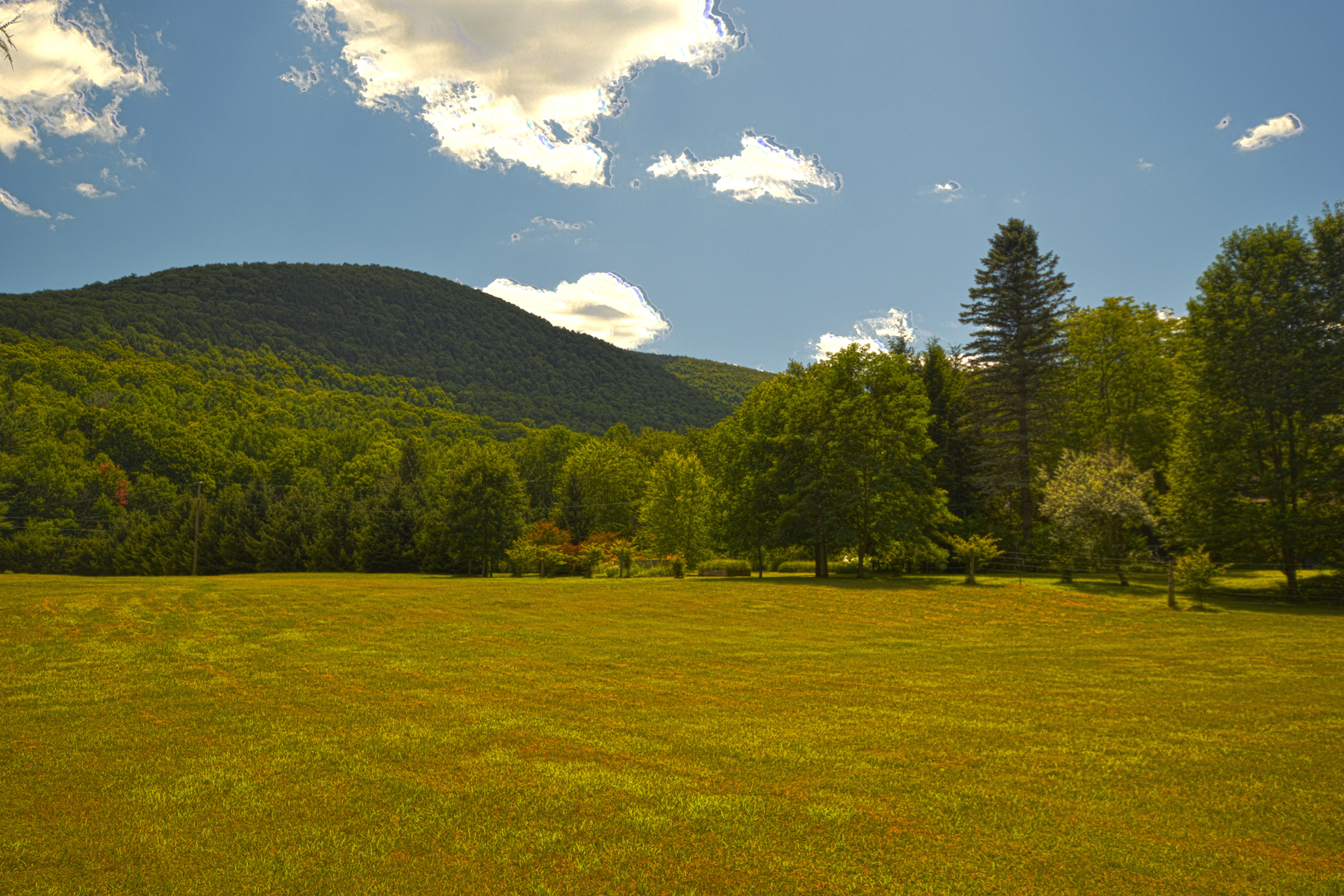 Additional photo for property listing at Awe-Inspiring Mountain Estate 113  Van Rd Lexington, New York 12452 United States