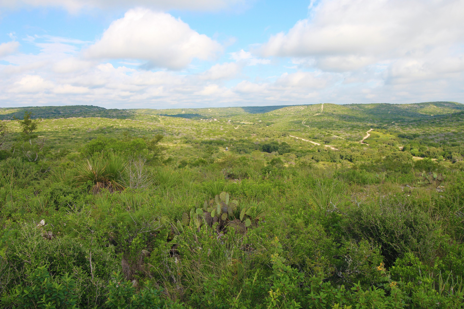 Farm / Ranch / Plantation for Sale at 235± Acres - Tinajo Draw Ranch 235+/- AC - Uvalde County Uvalde, Texas 78801 United States