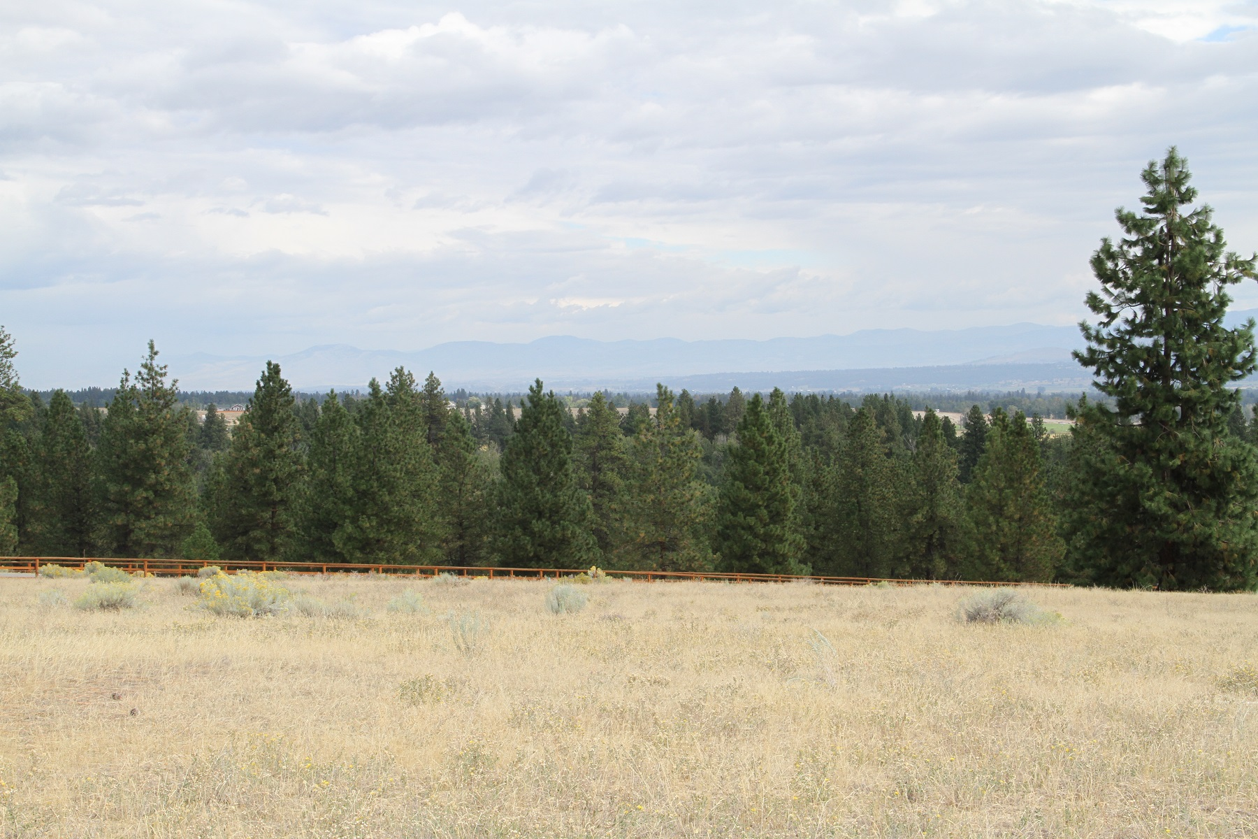 Additional photo for property listing at Lot 14 Hillside Ranch Rd Lot 14  Hillside Ranch Rd Victor, Montana 59875 United States