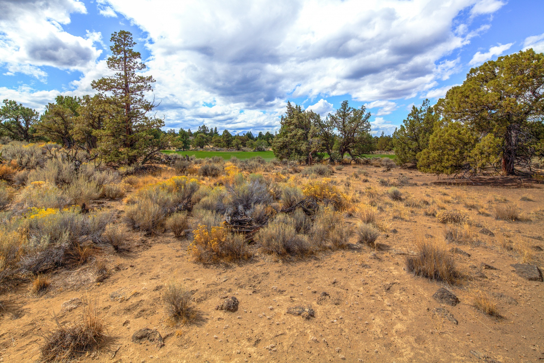 Land for Sale at Pronghorn Estates 65735 Pronghorn Estates Dr Lot 21 Bend, Oregon, 97701 United States