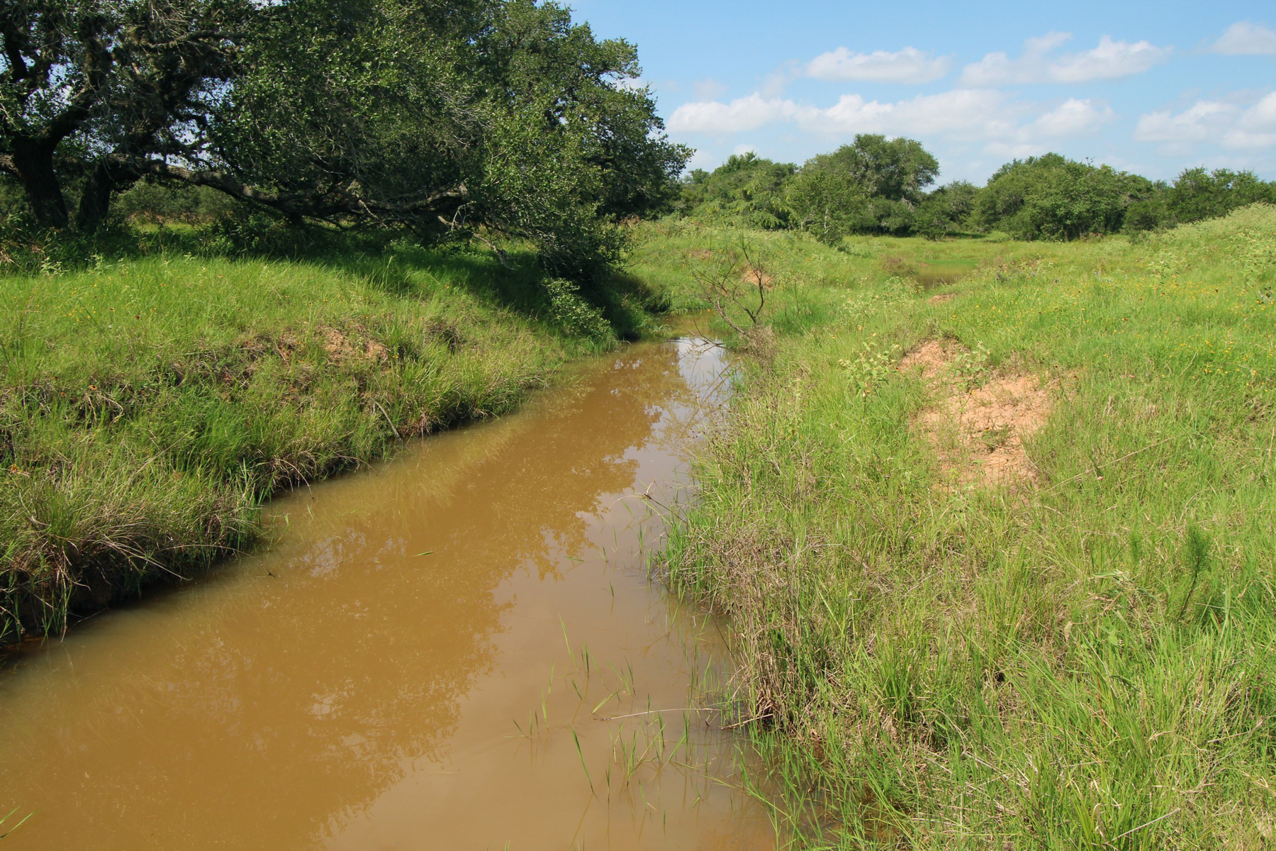 Additional photo for property listing at 894+/- Acrew Tri-County Ranch 894+/- AC / Tri-County Ranch ou Victoria, Texas 77901 Estados Unidos