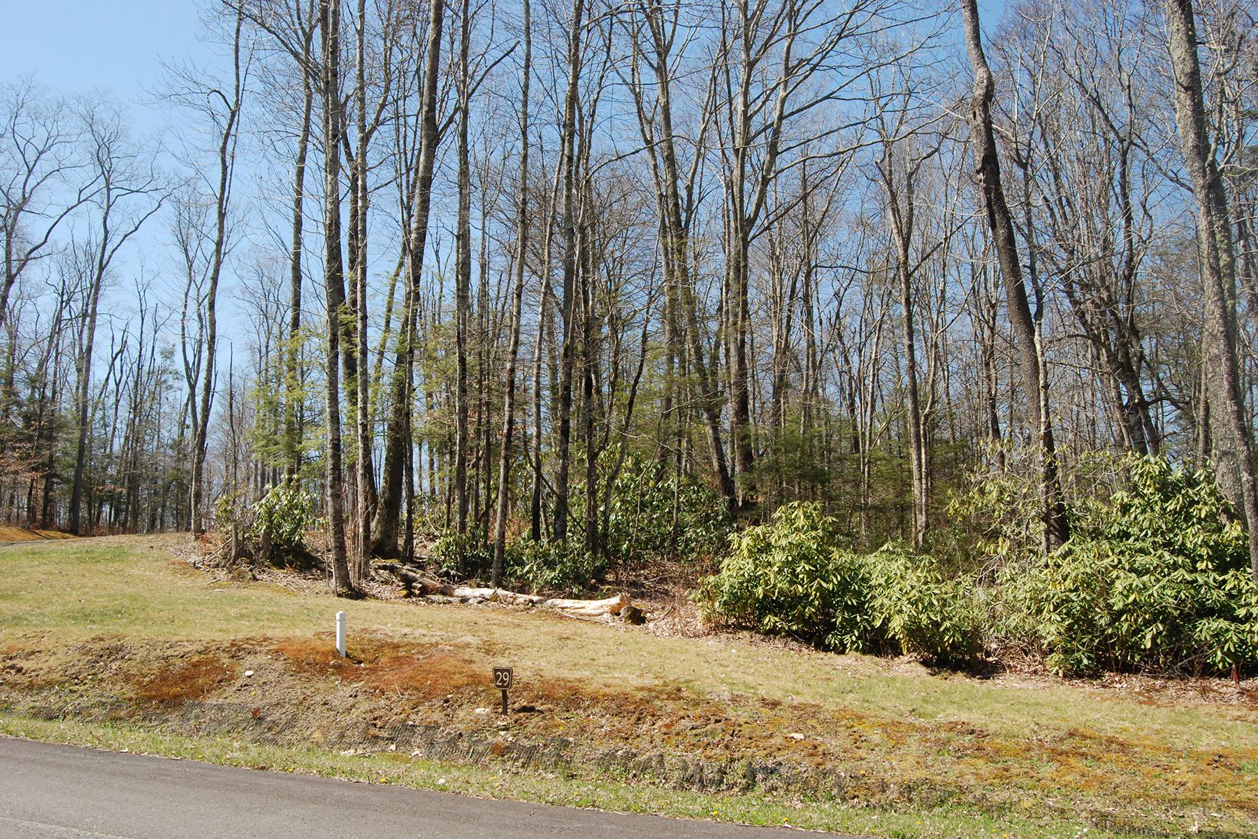 Terreno por un Venta en LINVILLE - THE VILLAGE AT GRANDFATHER Lot 29 Linville River Lane Linville, Carolina Del Norte, 28646 Estados Unidos