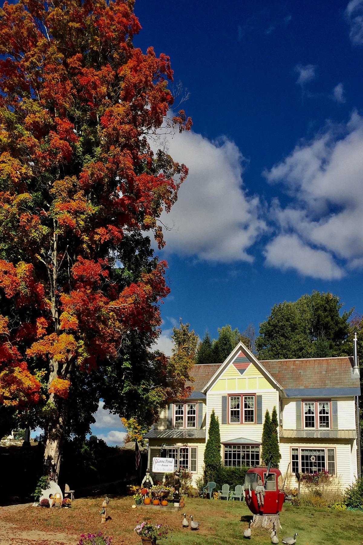 Additional photo for property listing at Goose Pond Inn 196  Main St Johnsburg, New York 12853 États-Unis