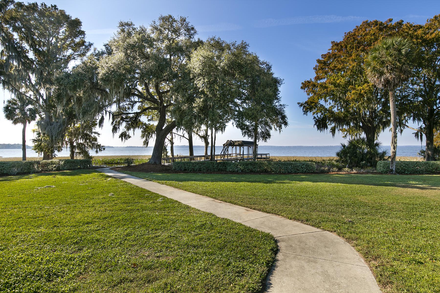 Additional photo for property listing at TAVARES  FLORIDA 11226  Lane Park Rd,  Tavares, Florida 32778 United States