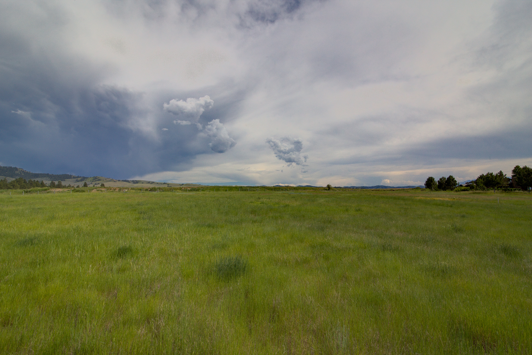 Additional photo for property listing at Lot 8 Palfiena Trl , Hamilton, MT 59840 Lot 8  Palfiena Trl Hamilton, Montana 59840 United States