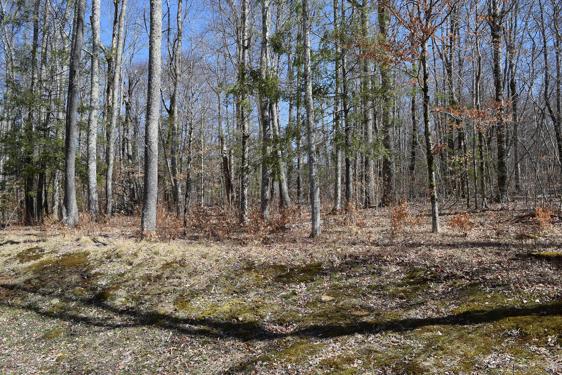Terreno por un Venta en LINVILLE - THE VILLAGE AT GRANDFATHER TBD Linville River Ln Linville, Carolina Del Norte, 28646 Estados Unidos