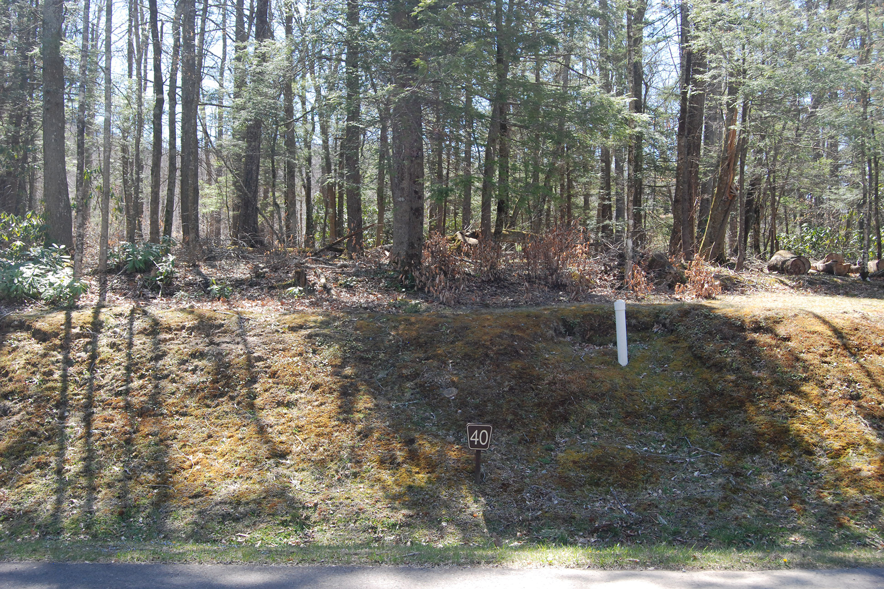 Land for Sale at LINVILLE - THE VILLAGE AT GRANDFATHER Lot 40 Linville River Lane, Linville, North Carolina 28646 United States