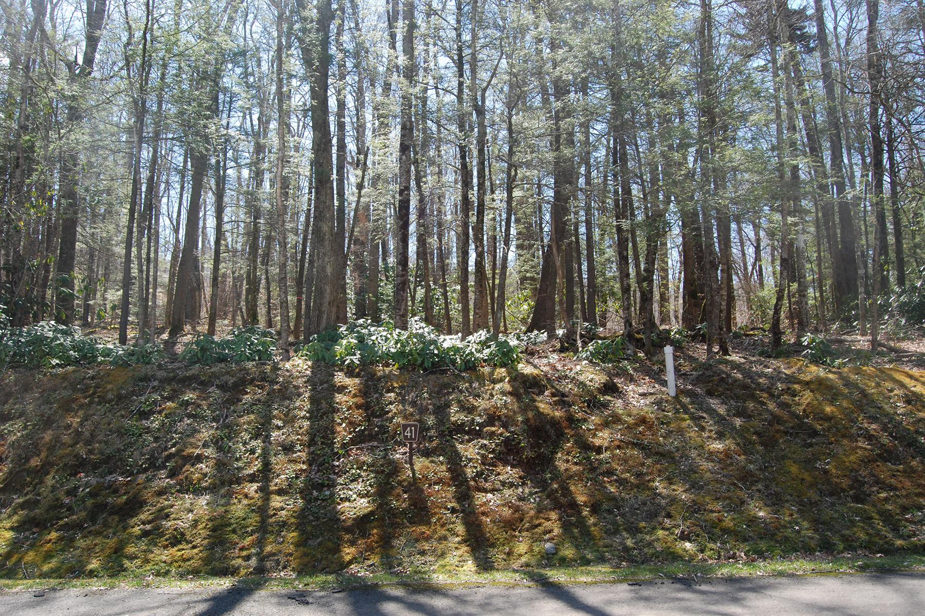 Terreno por un Venta en LINVILLE - THE VILLAGE AT GRANDFATHER Lot 41 Linville River Lane Linville, Carolina Del Norte, 28646 Estados Unidos