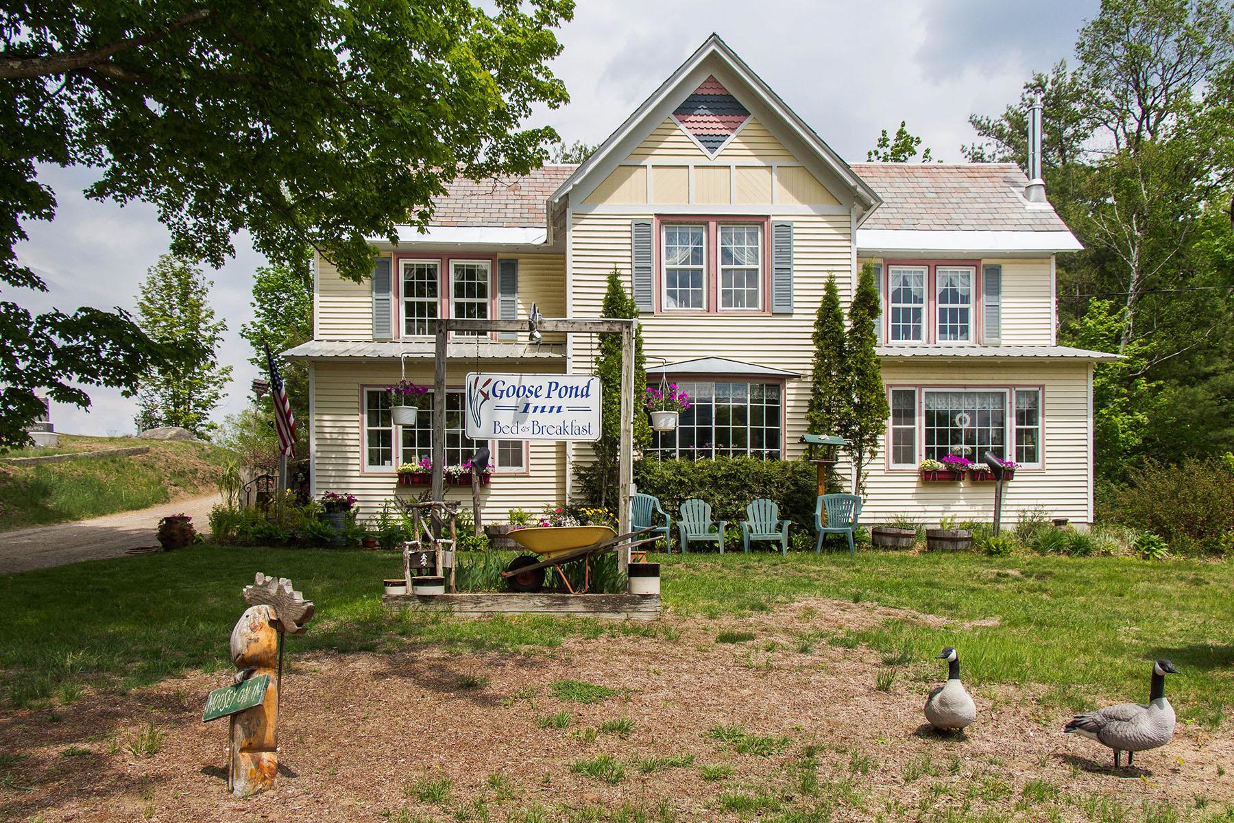 Additional photo for property listing at Goose Pond Inn 196  Main St Johnsburg, New York 12853 United States