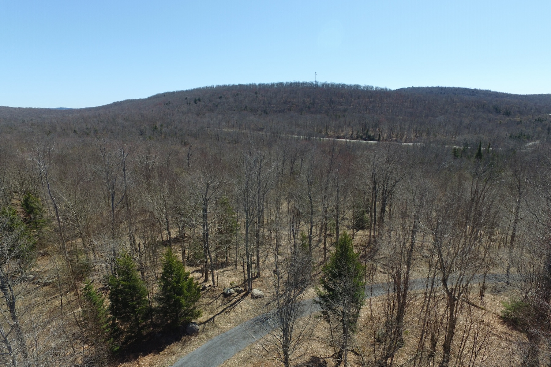 Additional photo for property listing at Adirondack Land For Sale 1515-A  Nys Route 28 Thendara, 纽约州 13472 美国
