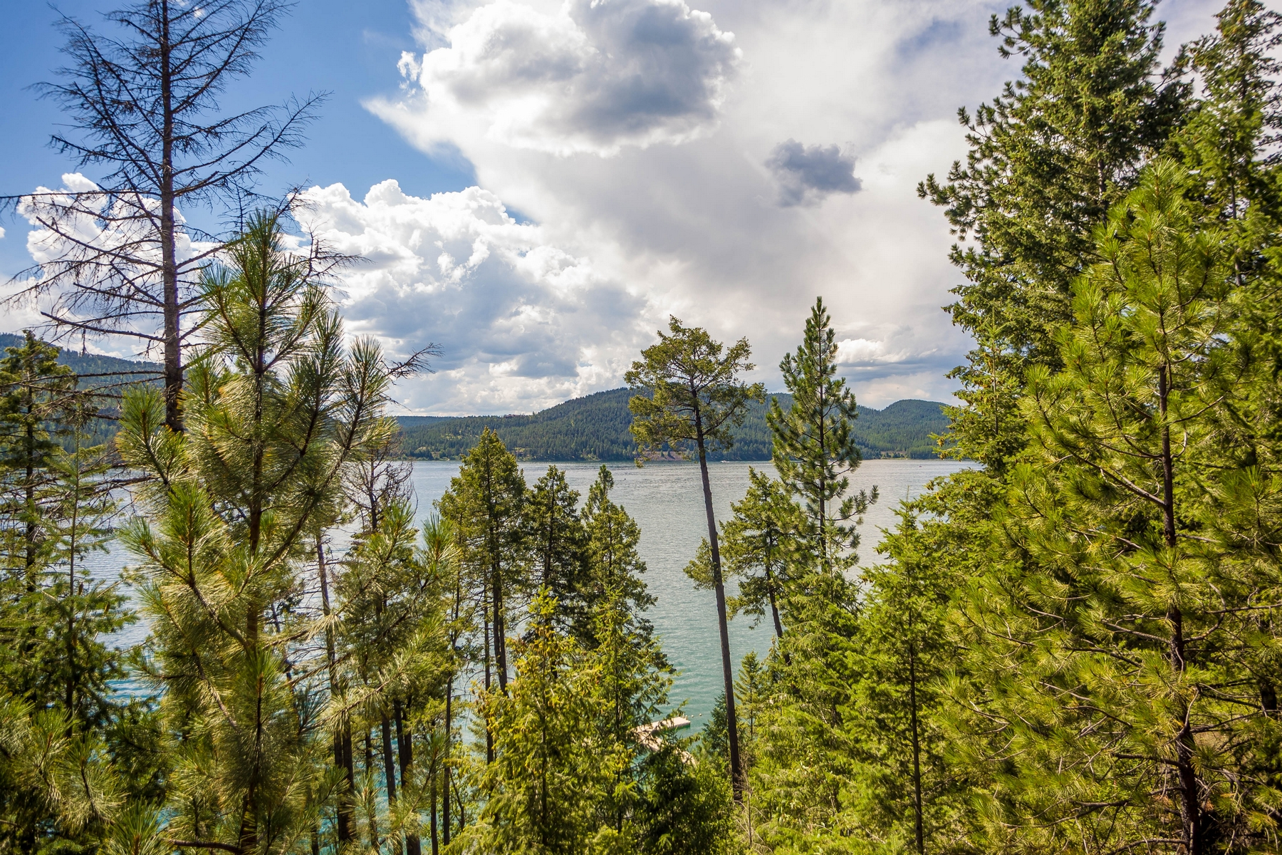 Additional photo for property listing at 2286 Houston Point Dr , Whitefish, MT 59937 2286  Houston Point Dr Whitefish, Montana 59937 United States
