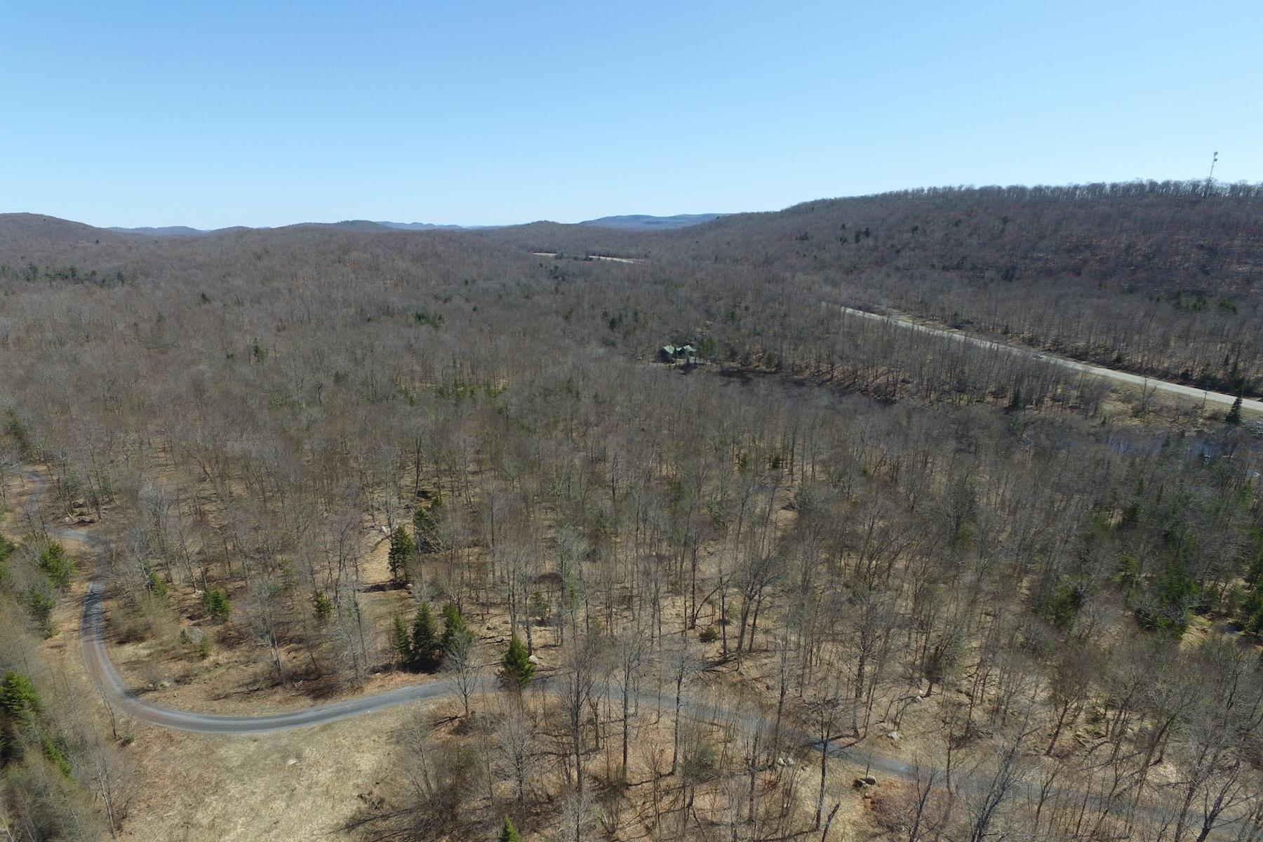 Additional photo for property listing at Adirondack Land For Sale 1515-A  Nys Route 28 Thendara, Nueva York 13472 Estados Unidos